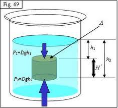 principio fundamental de la hidrostática