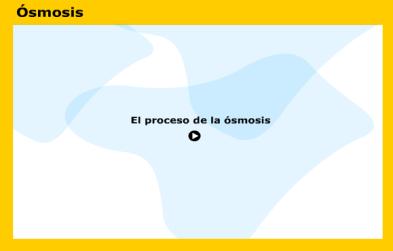 osmosis-en-la-celula
